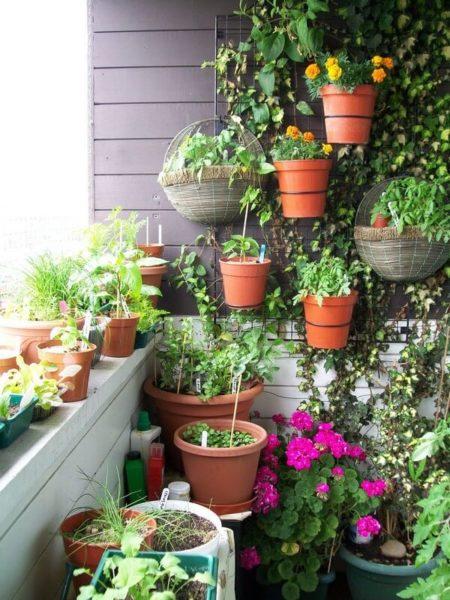 сад на открытом балконе