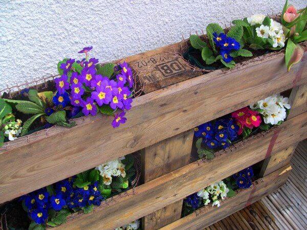 деревянная паллета