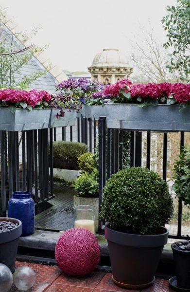 парапет балкона украшен живыми цветами