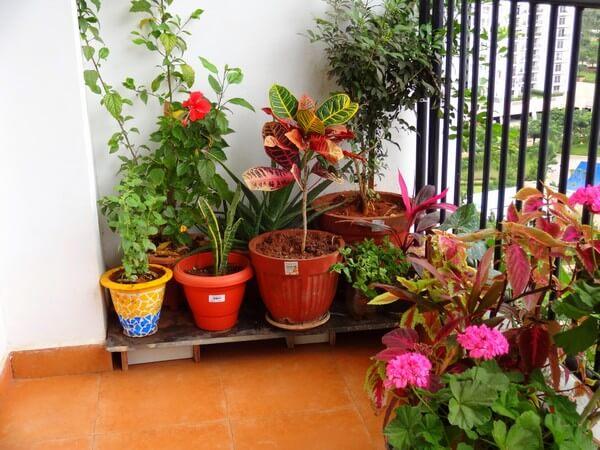 Летний и зимний сад на балконе – технические моменты и идеи оформления