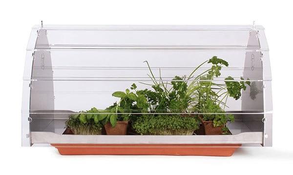 Теплица для балкона или подоконника