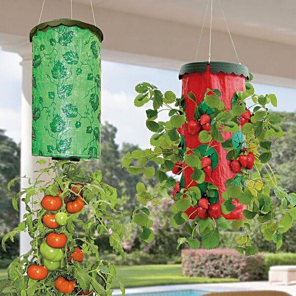 выращивание помидоров в подвесной таре
