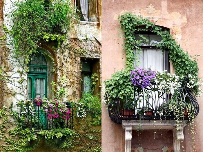 озеленение открытого балкона